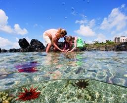 Keiki activities at Maui Ocean Center